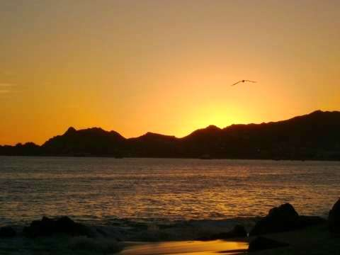 Adventure and Nature in Los Cabos