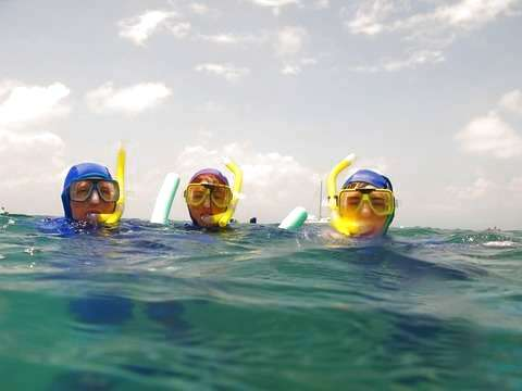 Diving in Cape Reef With Snorkel
