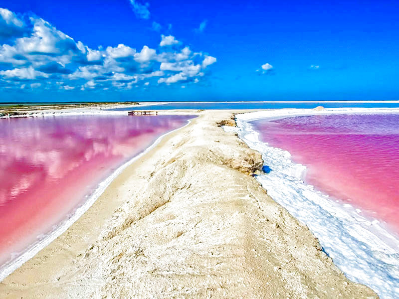 Tour Tour las Coloradas - Turismoi.mx