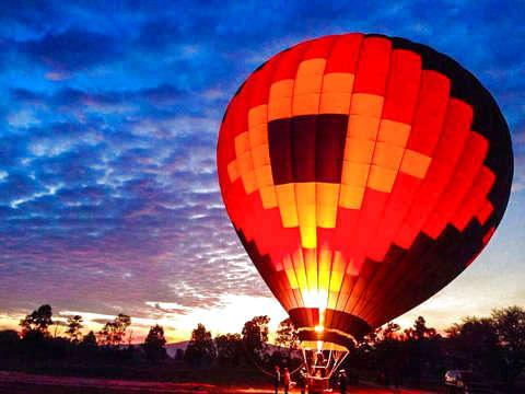 Fly in Globe in Querétaro
