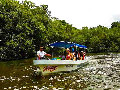 Tour por la Laguna de la Garza Tigre (Chacahua)