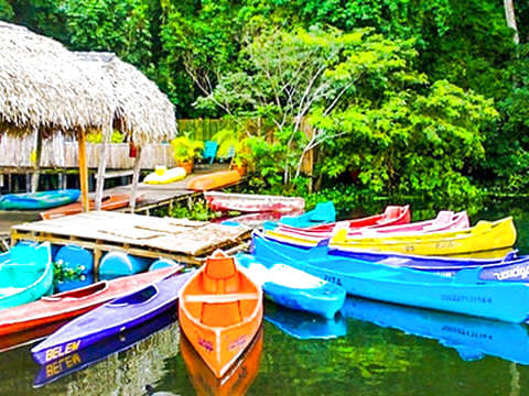 Mystic Paradise Nature Tour in Veracruz
