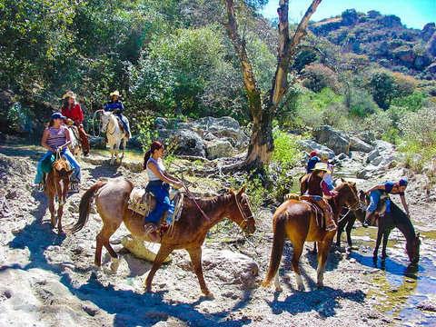 """Full Day Horseback Ride """"Rancho Day"""""""