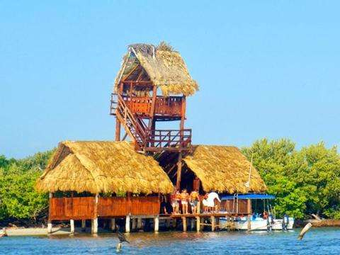 From Cancun: Visit Isla de Holbox