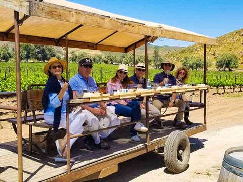 Workshop Make Your Own Premium Wine in Ensenada