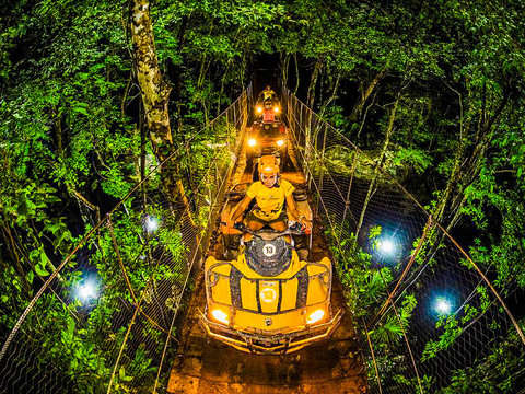From Riviera Maya: Emotions Jungle Night