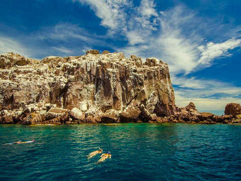 From Los Cabos: Private Trip to Espiritu Santo Island