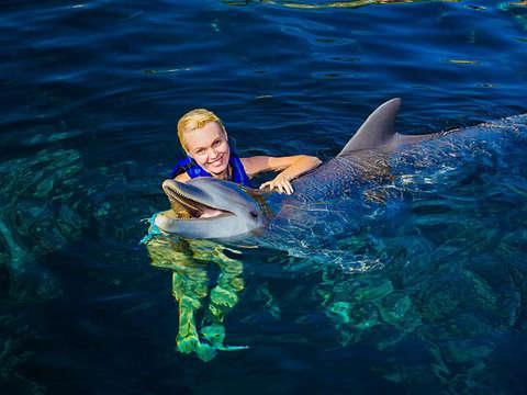 3x1 Tulum + Xel-Há + Swim With Dolphins