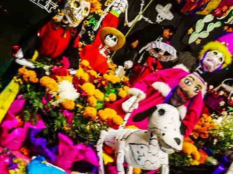 Night of Legends by Xochimilco and Island of the Dolls