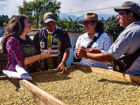 Flowers, Sugar and Coffee Aroma Tour in Veracruz