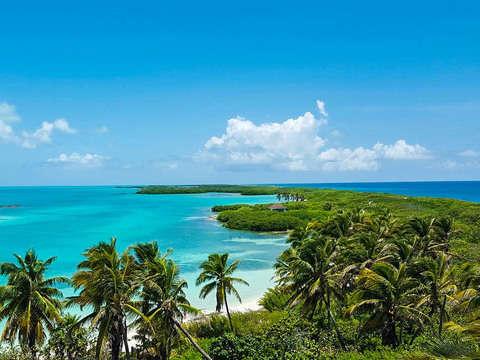 Contoy Island in Riviera Maya