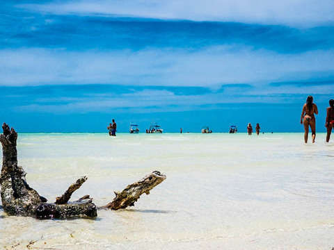 Desde Cancún: Holbox Discovery